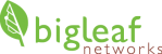 Bigleaf-Logo-current-web-3